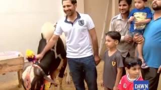 Cricket Star Sarfraz Ahmed celebrating Eid in home town