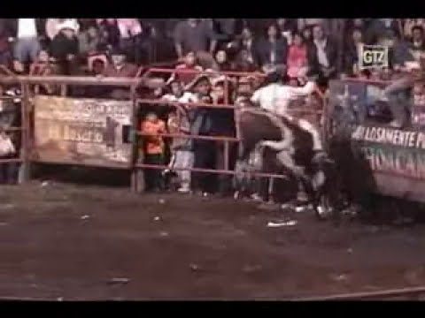 Rancho la estrella vs Los genios del jaripeo (motosierra por los suelos)