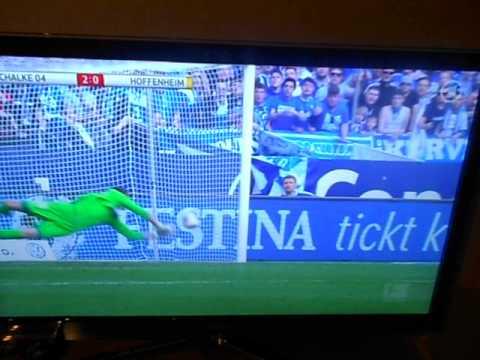 FC Schalke 04 - 1899 Hoffenheim 24.Spieltag Saison 2013/2014