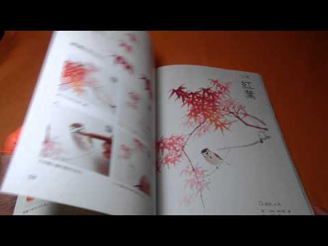 Japanese Ink Wash Painting How To Draw Flower, Bird And Insect Book Japan  0814