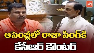 CM KCR Strong Counter To Raja Singh In Assembly | KTR | TRS | BJP