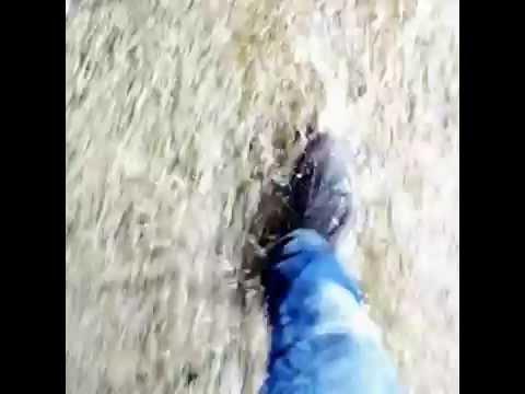 Tappa 5 - #InCamminoperMatera2019 (Camminando sotto la Pioggia)