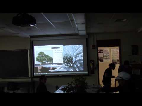 Lecture 15 Student presentations