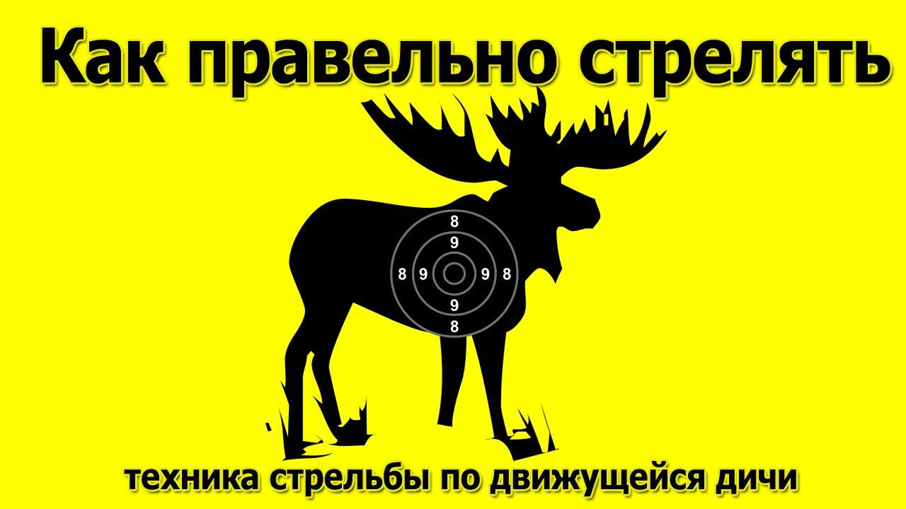 стрелять по уткам: