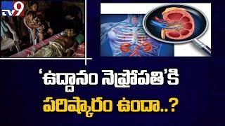 A fresh look at Uddanam kidney problem