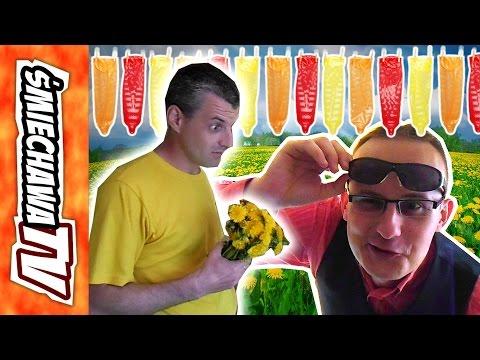 Randka Antka u Szwagra Video Dowcip