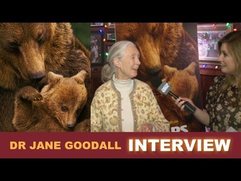 Bears 2014 Interview with Dr Jane Goodall for Disneynature - Beyond The Trailer
