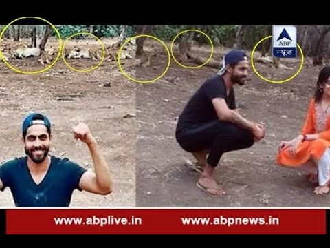 Ravindra Jadeja in trouble after taking photos with lions in Gir National Park