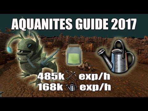 [Runescape 3] Aquanites Farming Guide 2017 | Seedicide | 160k Farming exp/h | 480k Range exp/h