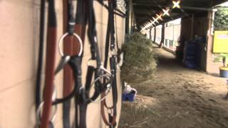 Bob Baffert's Los Alamitos Barn