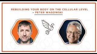 Rebuilding Your Body on the Cellular Level - Peter Wasowski