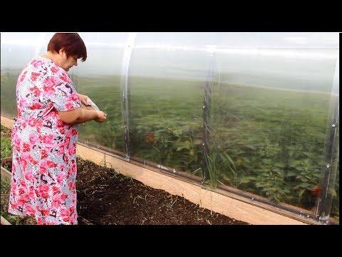 Огород Без Хлопот. Как Улучшить Структуру Почвы.