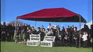 Memorial White Dove Service Rose Hills 714 903-6599