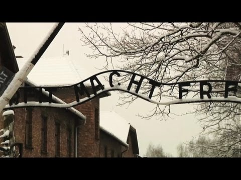 Holocaust survivors gather for Auschwitz 70th anniversary