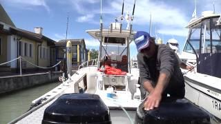 FIPSAS   Progetto Sharklife   Tag alle verdesche
