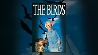 Download The Birds 3Gp Mp4