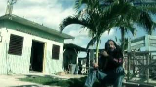 Watch Israel Vibration Natty Dread video