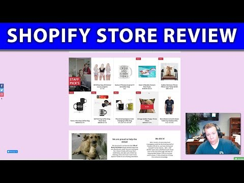 Shopify Store Review ❇️ Does This Drop Shipping Store Have a Chance?