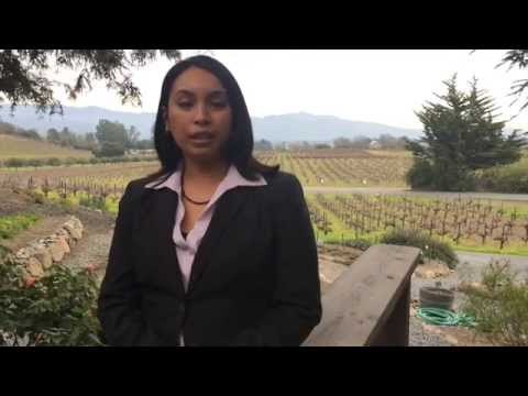 Francis Ford Coppola Winery presents: Sofia Red - Barrel Aging & Blending