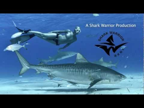 GoPro Ambassador Lesley Rochat: FREEDIVING WITH SHARKS