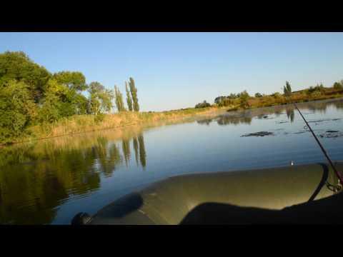 ловля на ужгородский стик