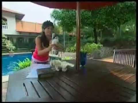 Imel Putri Cahyati & Temmy Rahadi - Merpati. video