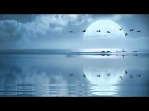 Amazing Nature Sounds: Birdsong & Sound with Tibetan Bells for Meditation