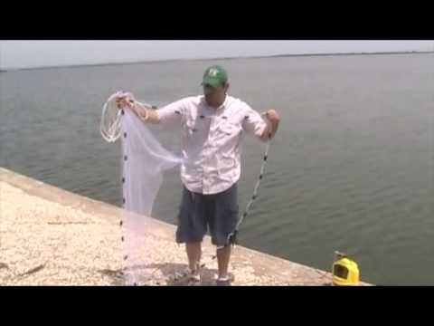 How to Cast a Cast Net (www.texanangler.com)