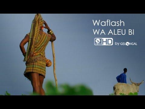 Wa Aleu bi - Waflash