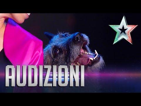 Impresionante ejercicio de un perro en el show Italia´s Got Talent
