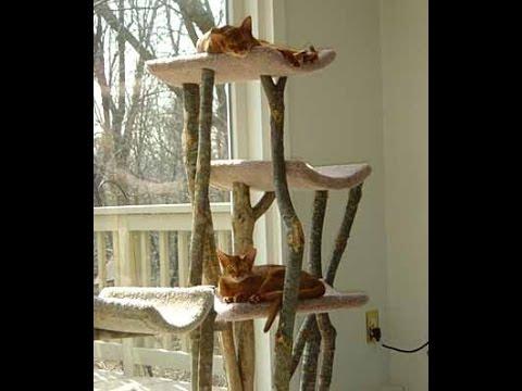 Дерево для кошек своими руками фото