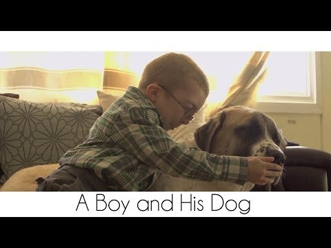 A Boy And His Dog video