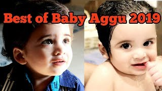 Best of baby Aggu in 2019  (Compilation)