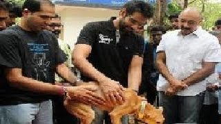 Sathyaraj , Sibiraj Adopts a Stray Dog Saved From Moulivakkam Building Collapse :