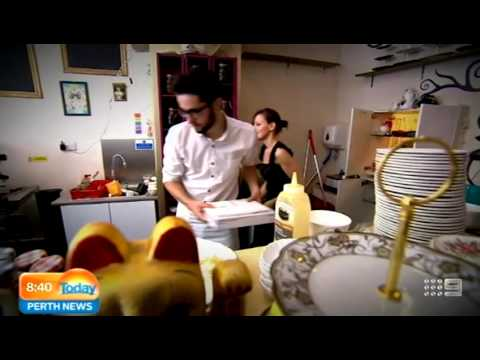 Cat Cafe | Today Perth News