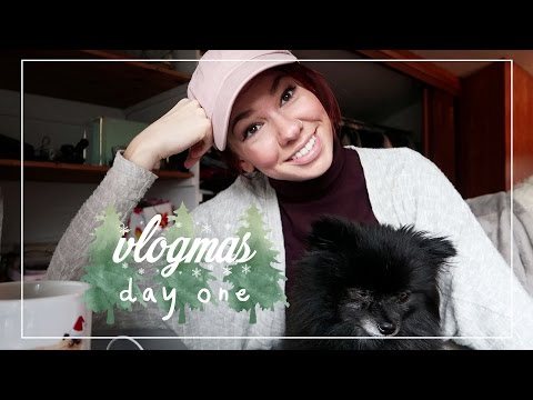 Getting My Life Together & Concert Fail // Vlogmas Day 1