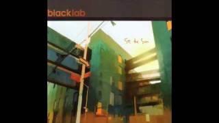 Watch Black Lab Lifelike video