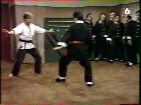 """""""Manimal"""" - Le kung-fu animalier"""