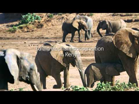 Imagery for Conservation