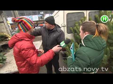 """Продолжение елочного расследования """"Абзаца!"""" - 26.12.2013"""
