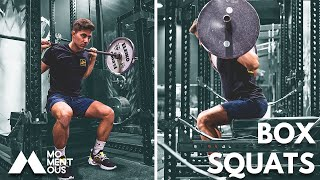 How To Box Squat The RIGHT Way (SQUAT HEAVIER!!)