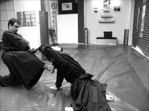 Ogawa Ryu Aikijujutsu - November Saturday Training Image 1