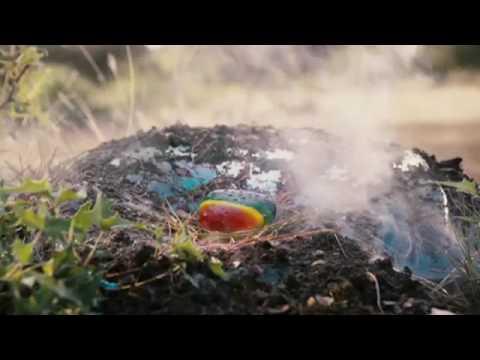 Shorts: La piedra mágica Trailer