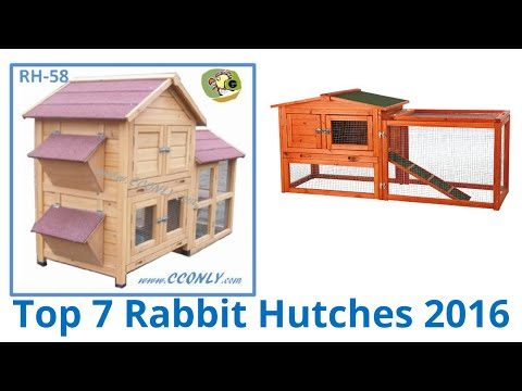 7 Best Rabbit Hutches 2016
