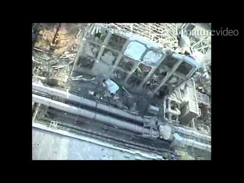 Thumbnail of video Fukushima's nuclear emergency - by Nature Video