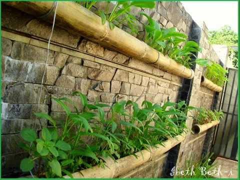 ... tumbuhan vertikal garden dapat menjadi hiasan dan sayuran dipekara