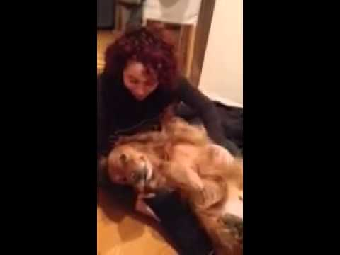 A Girl And Her Dog video