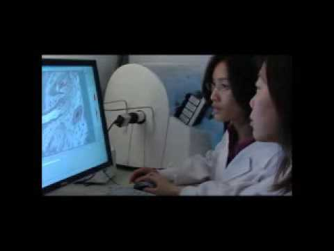 NRPGM Core facilities introduction  - A7Taiwan Mouse Clinic--National Phenotyping Center