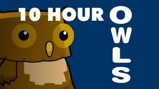 Owls - 10 Hours