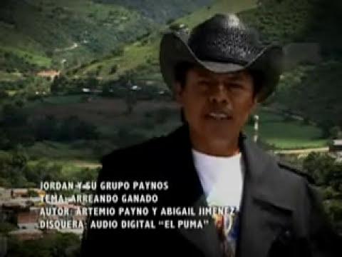 GRUPO PAYNOS-ARREANDO GANADO